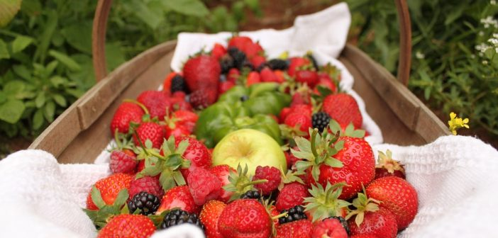 strawberries-552238_960_720